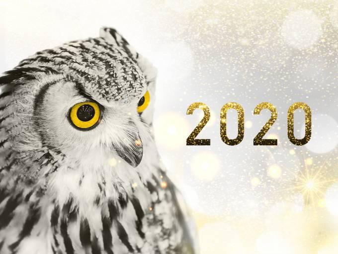 Kerstverlof 2019